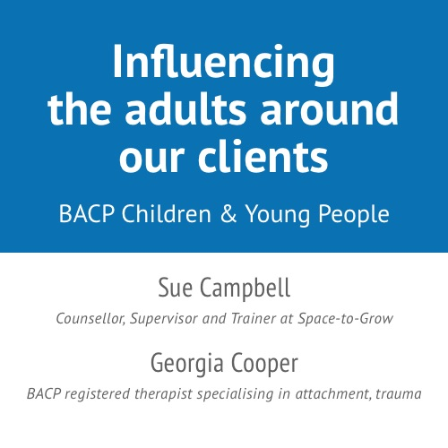 Influencing the adults around our clients